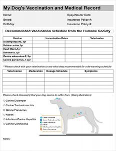 Doodle NV: F1B Goldendoodles - Vaccination and medical record form